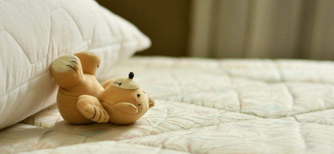 10+1 érdekesség az alvásról – 1. rész